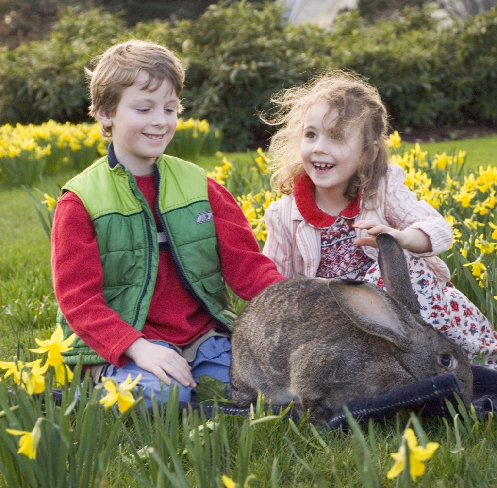 Children with bunny