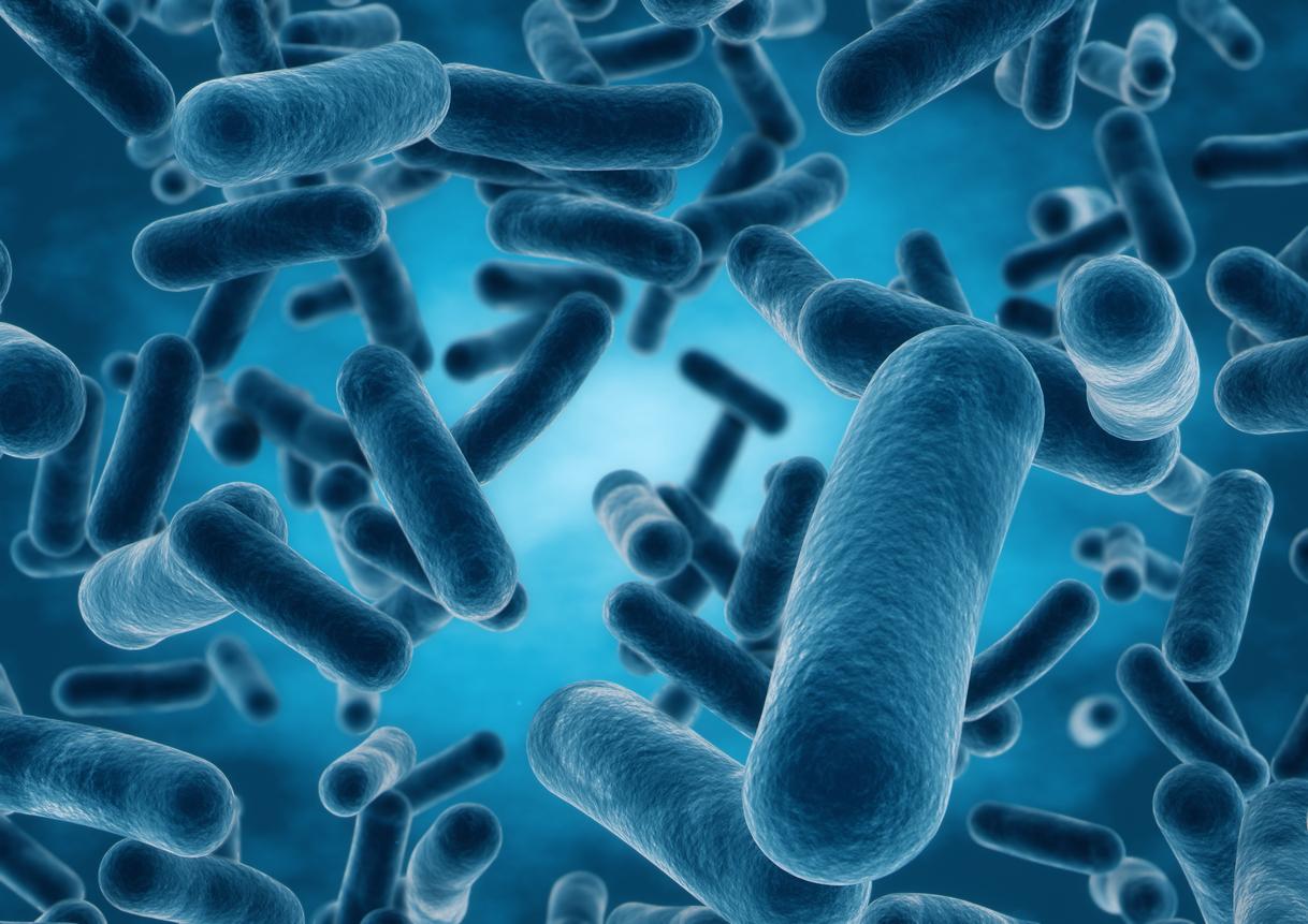Dangerous bacteria